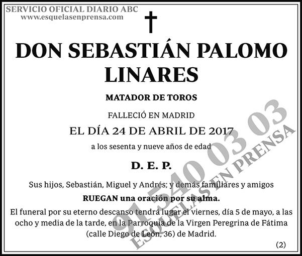 Sebastián Palomo Linares